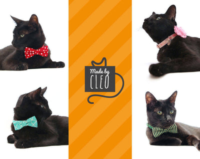 "Pet Bow Tie - ""Paloma Gray"" - Light Gray w/ Paisley Damask - Wedding/Special Occasion - Detachable Bowtie for Cats + Dogs"