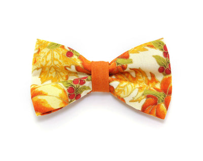 "Cat Collar - ""Autumn Harvest"" - Pumpkins & Fall Leaves - Breakaway Buckle or Non-Breakaway - Cat, Kitten + Small Dog Sizes"
