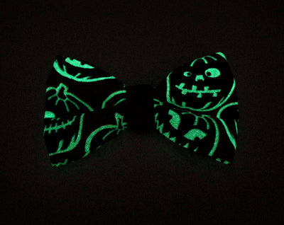 "Halloween Cat Collar with Flower Set - ""Sleepy Hollow"" - Glow in the Dark Pumpkin Cat Collar + Flower (Spooky Swirl) - Cat & Small Dog Sizes"