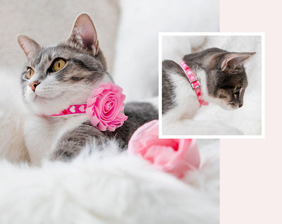 "Valentine Cat Collar - ""Candy Hearts - Pink"" - Pink Heart Cat Collar - Breakaway Buckle or Non-Breakaway - Cat + Small Dog Sizes"