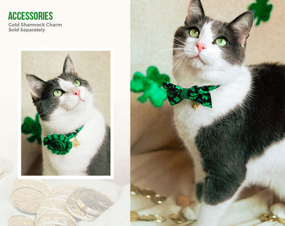 "St. Patrick's Day Cat Collar - ""Shamrock Cove"" - Shamrocks on Black / Breakaway Buckle or Non-Breakaway / Cat, Kitten + Small Dog Sizes"