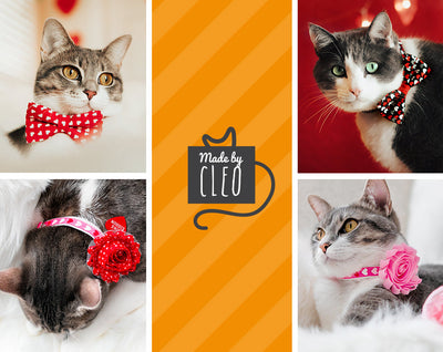 "Cat Collar - ""Crazy For You"" - Mint & Red Polka Dot Cat Collar - Breakaway Buckle or Non-Breakaway - Cat + Small Dog Sizes"