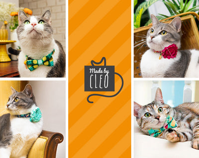 "Bow Tie Cat Collar Set - ""Pineapple Aqua"" - Tropical Green + Mint Cat Collar + Matching Bow Tie (Removable)"