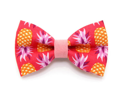 "Bow Tie Cat Collar Set - ""Pineapple Berry"" - Tropical Punch Red Cat Collar + Matching Bow Tie (Removable)"