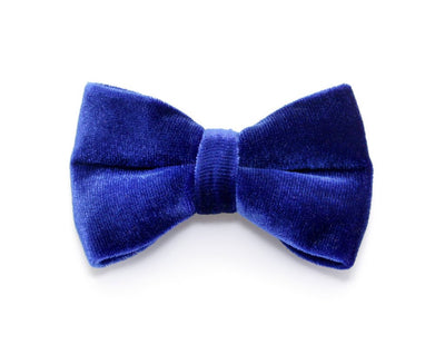 "Bow Tie Cat Collar Set - ""Regency Blue"" - Blue & Gold Velvet Cat Collar w/  ""Sapphire Blue Velvet Bow Tie"" (Removable)"