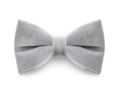 "Bow Tie Cat Collar Set - ""Regency Silver"" - Silver Embroidered Velvet Cat Collar w/  ""Pale Gray"" Velvet Bow Tie (Removable)"