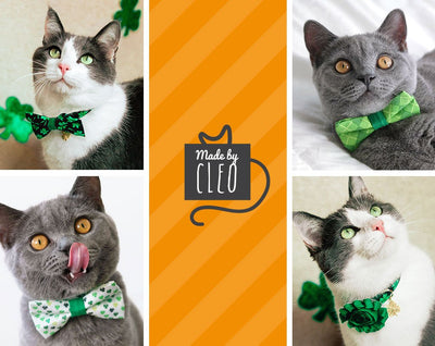 "St. Patrick's Day Cat Bow Tie - ""Shamrock Gold"" - Green & Gold Shamrock / For Cats + Small Dogs / Removable (One Size)"