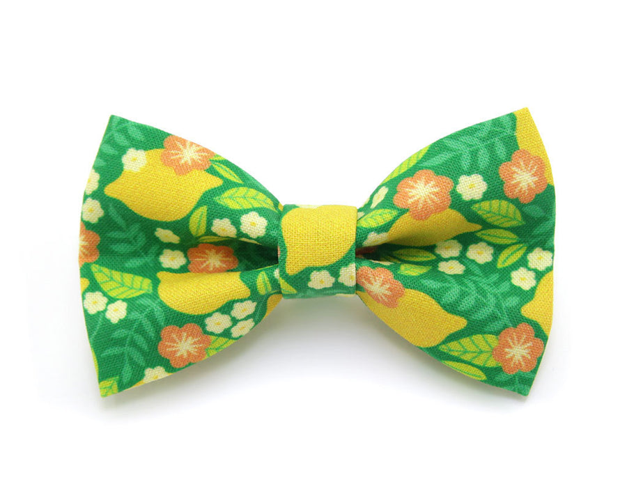 "Bow Tie Cat Collar Set - ""Lemon Trees - Green"" - Botanical Cat Collar w/ Matching Bow Tie (Removable)"