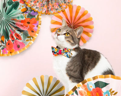 "Cat Bow Tie - ""Garden Party"" - Rifle Paper Co® Floral Bowtie / For Cats + Small Dogs / Removable (One Size)"