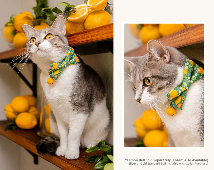"Cat Bow Tie - ""Lemon Trees - Green"" - Citrus Bowtie / For Cats + Small Dogs / Removable (One Size)"