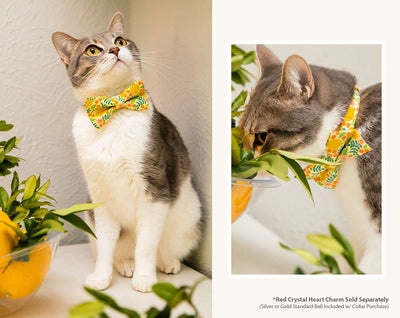 "Cat Collar - ""Lemon Trees - Yellow"" - Citrus Botanical - Breakaway Buckle or Non-Breakaway / Cat, Kitten + Small Dog Sizes"