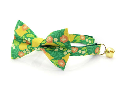 "Cat Collar - ""Lemon Trees - Green"" - Citrus Botanical - Breakaway Buckle or Non-Breakaway / Cat, Kitten + Small Dog Sizes"