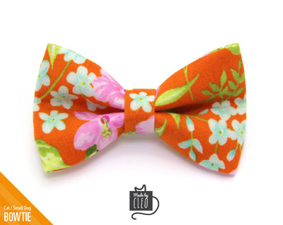 "Cat Bow Tie - ""Lanai"" - Hawaiian Orange Tropical Bowtie / For Cats + Small Dogs / Removable (One Size)"