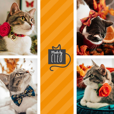 "Cat Collar + Flower Set - ""Pumpkin Pie"" - Charcoal Cat Collar w/ Pumpkin Orange Felt Flower (Detachable)"