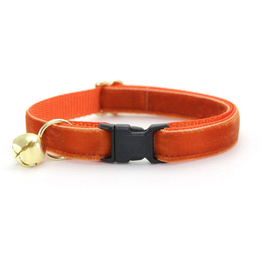 "Velvet Cat Collar - ""Roasted Pumpkin"" - Burnt Orange Velvet / Fall + Thanksgiving - Breakaway Buckle or Non-Breakaway / Cat, Kitten + Small Dog Sizes"