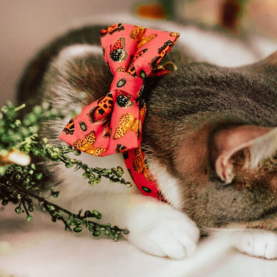 "Pet Bow Tie - ""Butterflies"" - Hibiscus Red Butterfly Bowtie / Nature Lover Gift - For Cats + Small Dogs / Removable (One Size)"