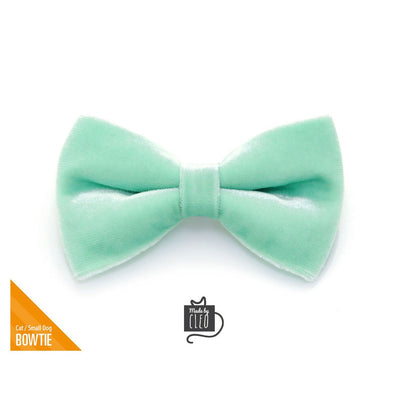 "Velvet Pet Bow Tie - ""Mint"" - Robin's Egg Velvet Bowtie / Wedding / For Cats + Small Dogs / Removable (One Size)"