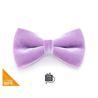"Velvet Pet Bow Tie - ""Lavender"" - Light Purple Velvet Bowtie / Wedding / For Cats + Small Dogs / Removable (One Size)"