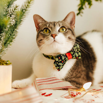 "Holiday Pet Bow Tie - ""Winter Garland - Night"" - Black Mistletoe & Berry Bowtie for Pet Collar / For Cats + Small Dogs / Removable (One Size)"