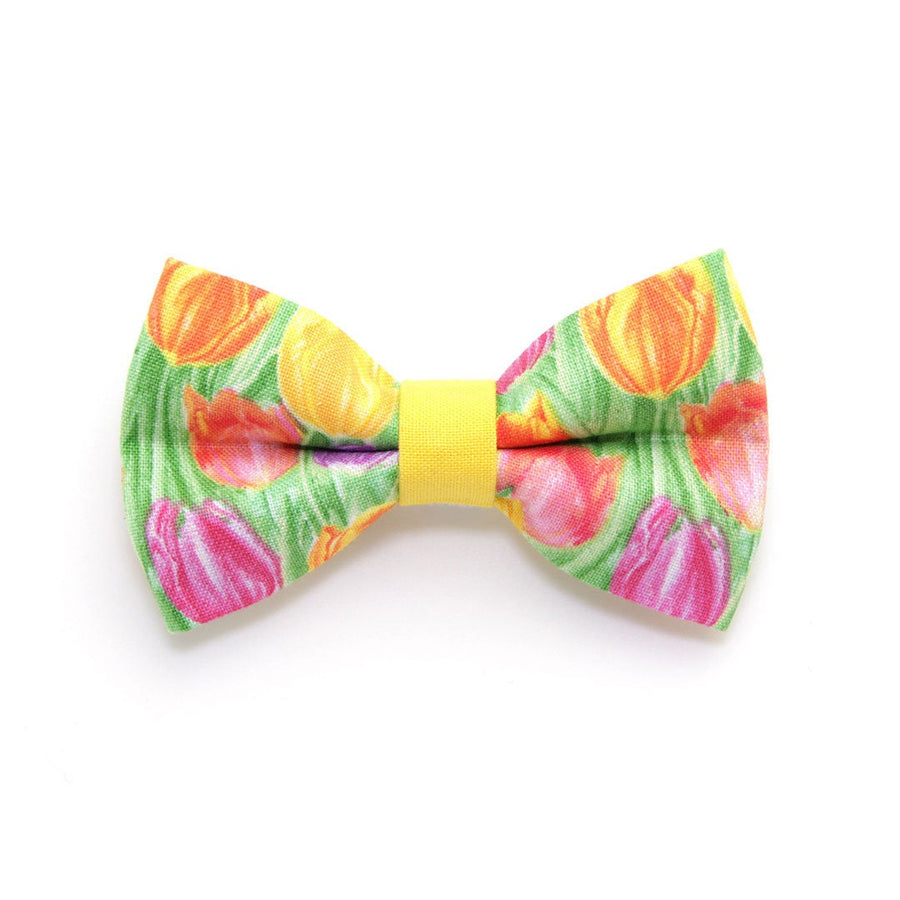 "Bow Tie Cat Collar Set - ""Spring Tulips"" - Floral Cat Collar w/ Matching Bowtie (Removable) / Easter / Mother's Day"