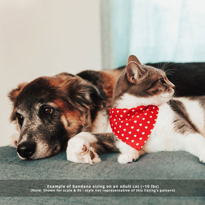 "Pet Bandana - ""True Love"" - Red Plaid Bandana for Cat + Small Dog / Valentine's Day Cat Bandana / Slide-on Bandana / Over-the-Collar (One Size)"