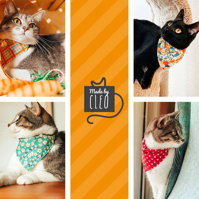 "Pet Bandana - ""Lanai"" - Orange Tropical Bandana for Cat Collar or Small Dog Collar / Slide-on Bandana / Over-the-Collar (One Size)"