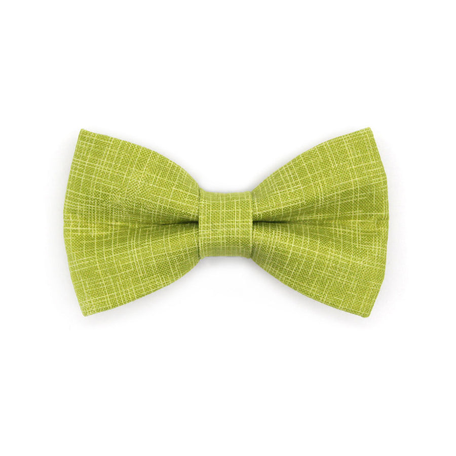 "Bow Tie Cat Collar Set - ""Chartreuse"" - Green Cat Collar w/ Matching Bowtie / Cat, Kitten, Small Dog Sizes"