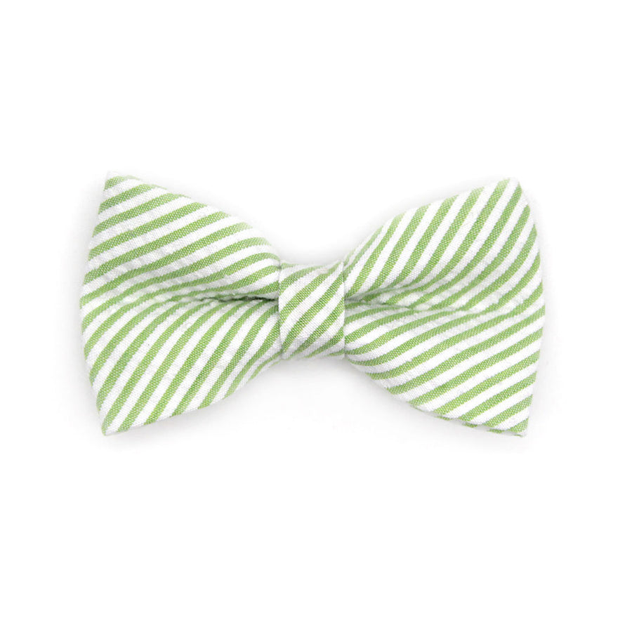 "Bow Tie Cat Collar Set - ""Camden"" - Seersucker Green Cat Collar w/ Matching Bowtie / Cat, Kitten, Small Dog Sizes"