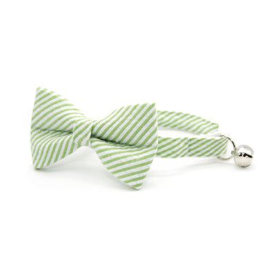 "Cat Collar - ""Camden"" - Seersucker Green Cat Collar / Breakaway Buckle or Non-Breakaway / Cat, Kitten + Small Dog Sizes"