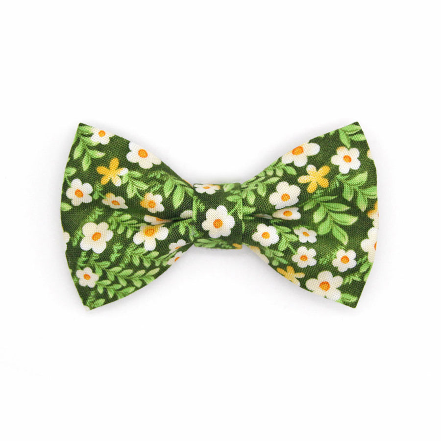 "Bow Tie Cat Collar Set - ""Hazel"" - Green Floral Cat Collar w/ Matching Bowtie / Cat, Kitten, Small Dog Sizes"