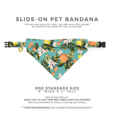 "Rifle Paper Co® Cat Bandana - ""Clementine"" - Citrus Teal Bandana for Cat Collar or Small Dog Collar / Slide-on Bandana / Over-the-Collar (One Size)"