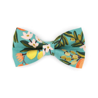 "Rifle Paper Co® Bow Tie Cat Collar Set - ""Clementine"" - Citrus Teal Cat Collar w/ Matching Bowtie / Cat, Kitten, Small Dog Sizes"