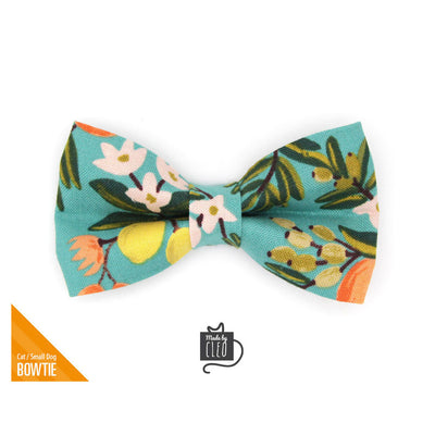"Rifle Paper Co® Pet Bow Tie - ""Clementine"" - Citrus Teal Bow Tie For Cats + Small Dogs (One Size)"