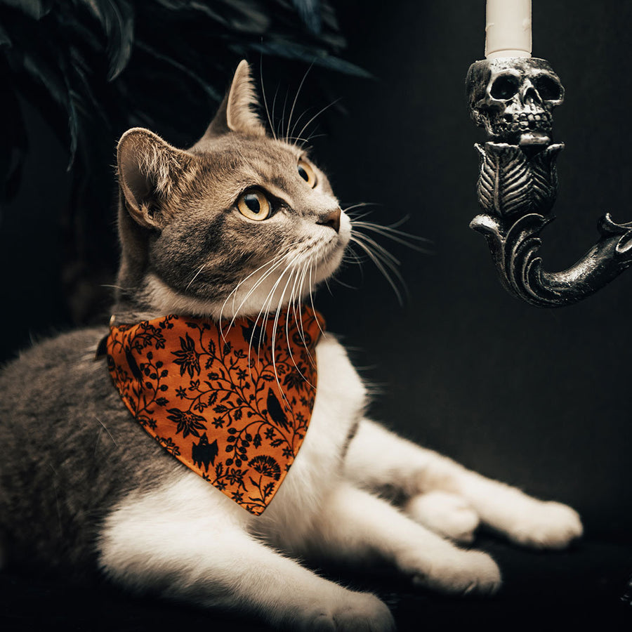 "Halloween Pet Bandana - ""Gothic Halloween"" - Black & Orange Spooky Floral Bandana for Cat + Small Dog / Slide-on Bandana / Over-the-Collar (One Size)"