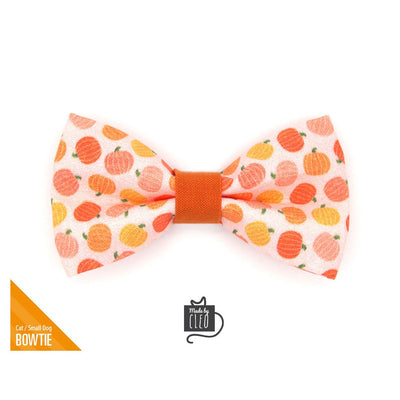 "Fall Pet Bow Tie - ""Peachy Pumpkins"" - Peach & Orange Pumpkin Bow Tie for Cat / Thanksgiving / For Cats + Small Dogs (One Size)"