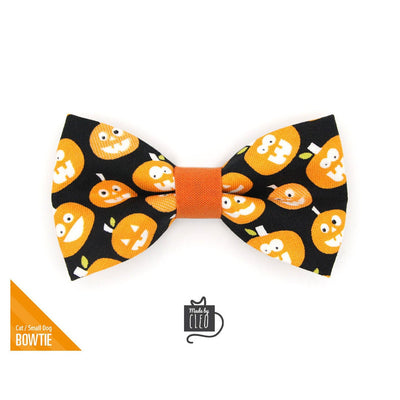 "Halloween Pet Bow Tie - ""Jolly Jack-o-lanterns"" - Glow-in-the-Dark Pumpkin Bow Tie for Cat / For Cats + Small Dogs (One Size)"
