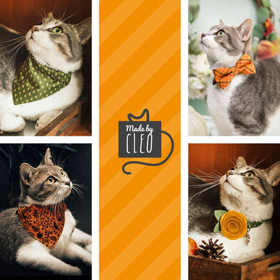 "Bow Tie Cat Collar Set - ""Peachy Pumpkins"" - Peach + Orange Pumpkin Cat Collar w/ Matching Bowtie / Fall, Thanksgiving / Cat, Kitten, Small Dog Sizes"