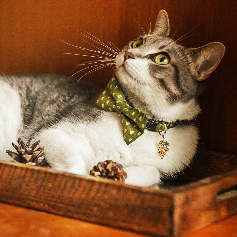 "Bow Tie Cat Collar Set - ""Woodmont"" - Oak Leaves on Olive Green Cat Collar w/ Matching Bowtie / Fall, Thanksgiving / Cat, Kitten, Small Dog Sizes"