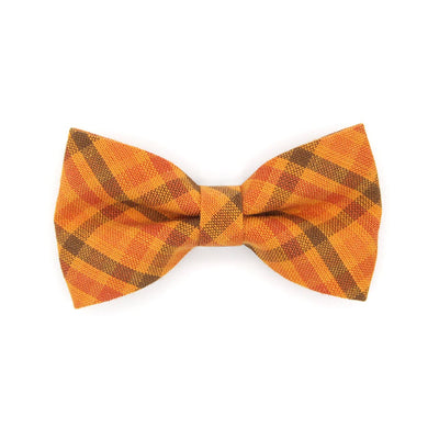 "Bow Tie Cat Collar Set - ""Persimmon Plaid"" - Harvest Orange Plaid Cat Collar w/ Matching Bowtie / Thanksgiving, Fall / Cat, Kitten, Small Dog Sizes"