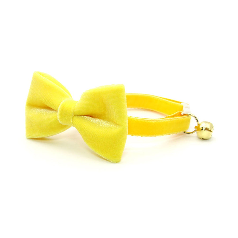 "Velvet Pet Bow Tie - ""Lemon Yellow Velvet"" - Light Yellow Velvet Bow Tie for Cat / For Cats + Small Dogs (One Size)"