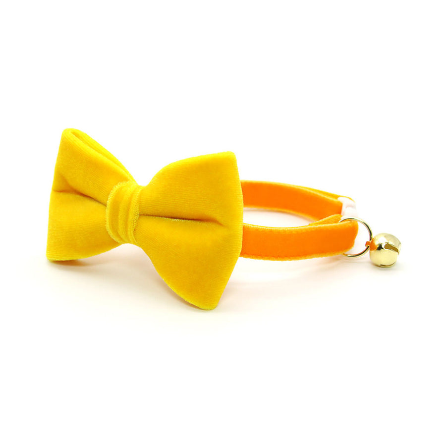 "Velvet Pet Bow Tie - ""Marigold Velvet"" - Rich Yellow Velvet Bow Tie for Cat / For Cats + Small Dogs (One Size)"