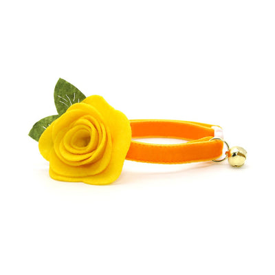 "Velvet Cat Collar - ""Marigold Velvet"" - Luxury Velvet Cat Collar / Breakaway Buckle or Non-Breakaway / Cat, Kitten + Small Dog Sizes"