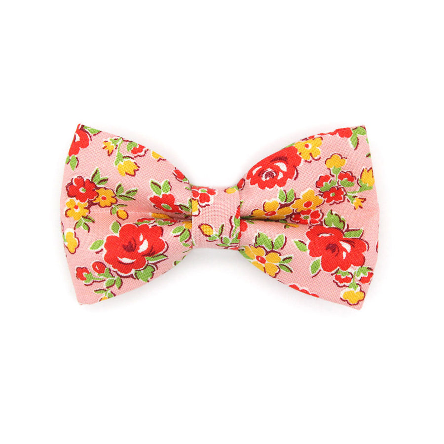 "Bow Tie Cat Collar Set - ""Maeve"" - Red & Pink Floral Cat Collar w/ Matching Bowtie / Cat, Kitten, Small Dog Sizes"