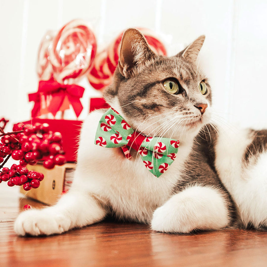 "Christmas Pet Bow Tie - ""Peppermint Twist"" - Red & Green Holiday Candy Bowtie for Pet Collar / For Cats + Small Dogs / Removable (One Size)"