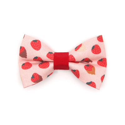 "Pet Bow Tie - ""Chocolate Strawberries"" - Dipped Strawberry Bow Tie for Cats + Small Dogs (One Size) / Cat Bow Tie / Valentine's Day"