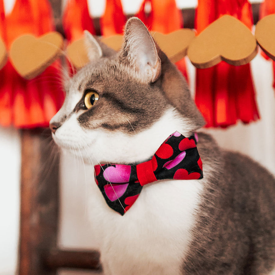 "Pet Bow Tie - ""Ombre Hearts"" - Red & Pink Heart Bow Tie for Cats + Small Dogs (One Size) / Cat Bow Tie / Valentine's Day"