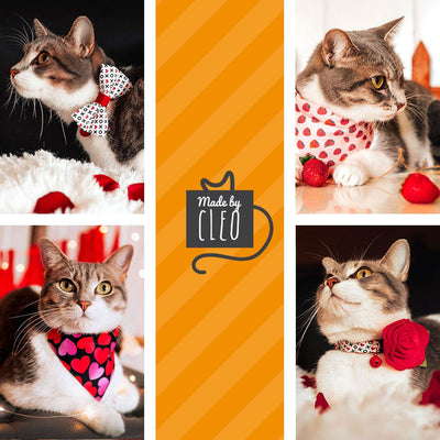 "Pet Bandana - ""Secret Admirer"" - Black & Red Heart Bandana for Cat + Small Dog / Valentine's Day Cat Bandana / Slide-on Bandana / Over-the-Collar (One Size)"