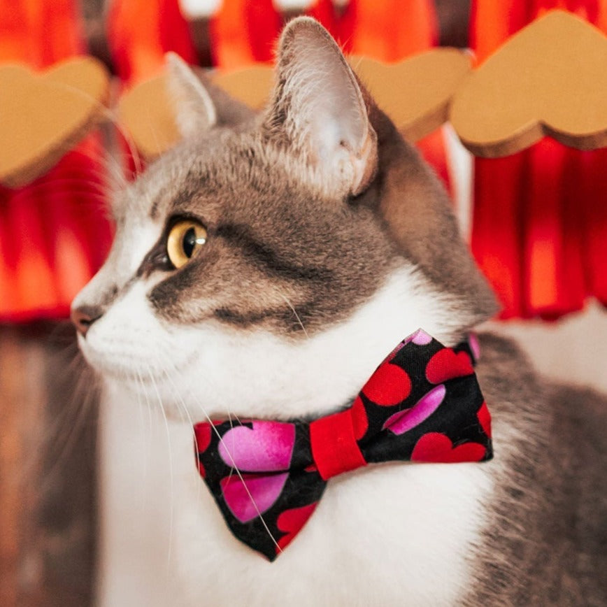 "Bow Tie Cat Collar Set - ""Ombre Hearts"" - Red & Pink Heart Cat Collar w/ Matching Bowtie / Valentine's Day / Cat, Kitten, Small Dog Sizes"