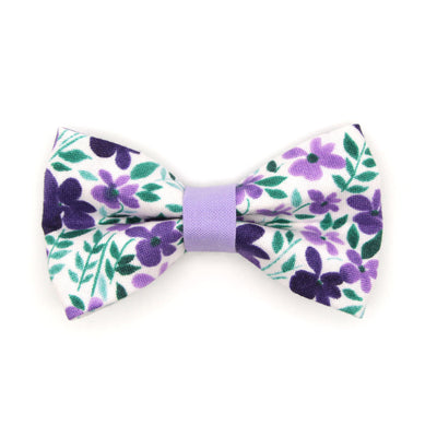 "Bow Tie Cat Collar Set - ""Violet Fields"" - Floral Purple Cat Collar w/ Matching Bowtie / Cat, Kitten, Small Dog Sizes"