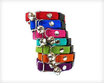 Pet Collar - Solid Colors (7 Styles) - Pick One - Cat Collar & Dog Collar Sizes - (Red, Blue, Pink, Teal, Green, Orange, Purple)